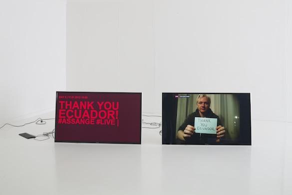 Mediengruppe Bitnik, Delivery for Mr. Assange, 2014.
