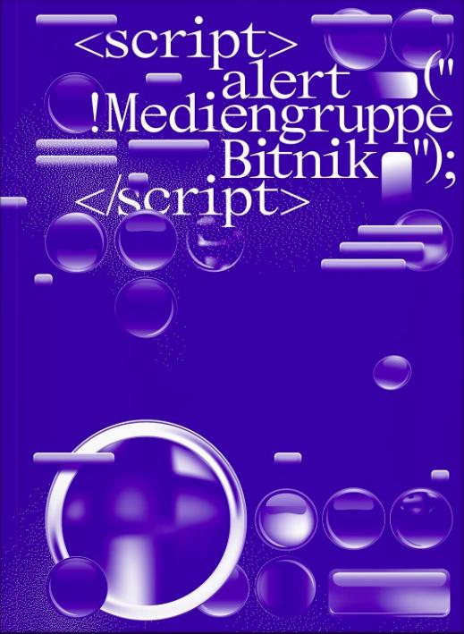 MediengruppeBitnik